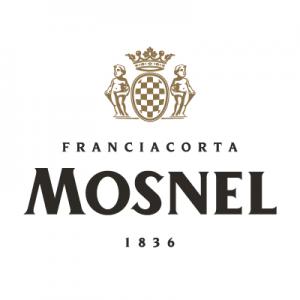 Mosnel-Logo